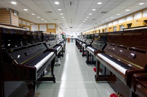 Pianos Lined up in a Piano Store